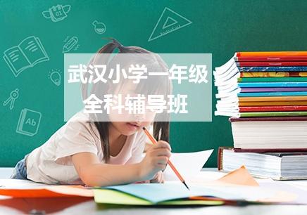 武汉小学一年级全科一对一补习