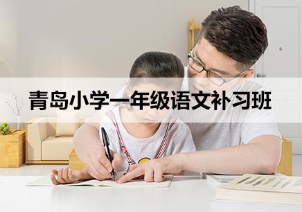 青岛小学一年级语文一对一辅导培训班