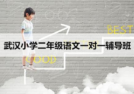 武汉小学二年级语文补习