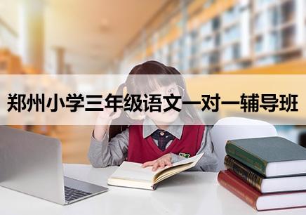 武汉小学三年级语文补习