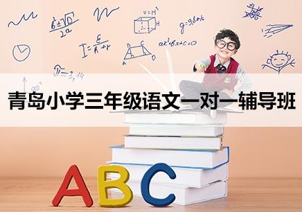 青岛小学三年级语文补习