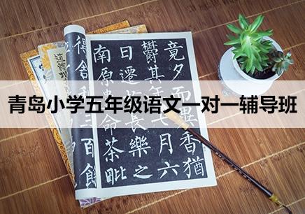 青岛小学五年级语文辅导