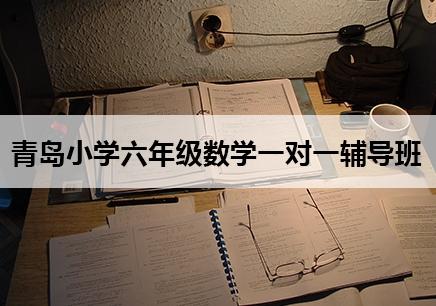 青岛小学六年级数学辅导多少钱?