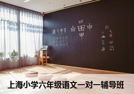 上海六年級語文一對一補習班