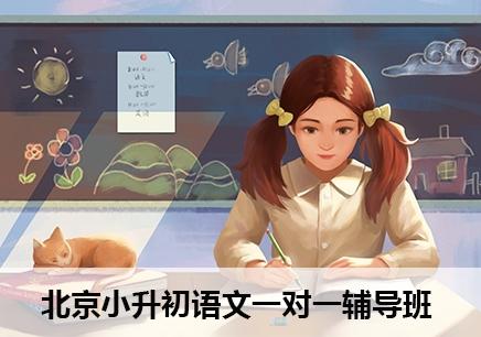 北京小升初语文辅导费用