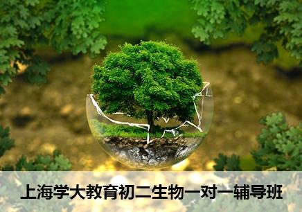 上海初二生物一对一补习