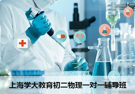上海初二物理一对一补习班