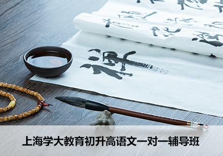 上海初升高语文一对一辅导班