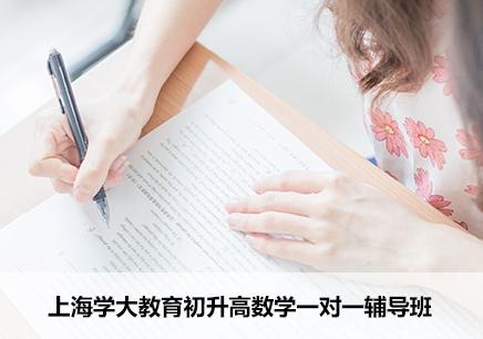 上海初升高数学一对一辅导机构