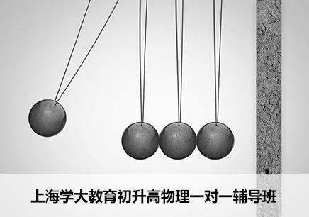 上海初升高物理一对一辅导班
