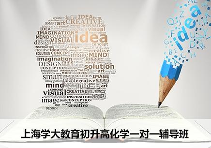 上海初升高化学一对一辅导班