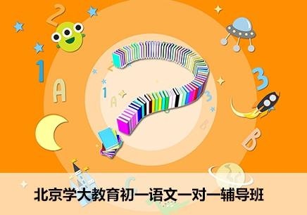 北京初一语文课外辅导机构