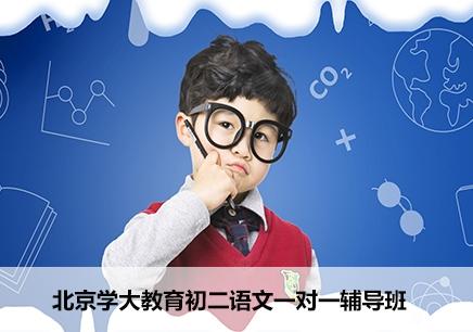 北京初二语文课外辅导机构
