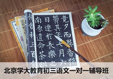 北京初三语文课外辅导哪个好