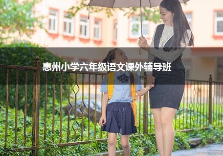 惠州小学六年级语文一对一补习班