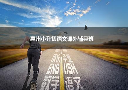 惠州小升初语文一对一补习班