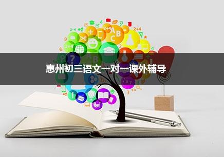 惠州初三语文一对一辅导