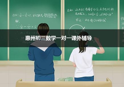 惠州初三数学一对一辅导班