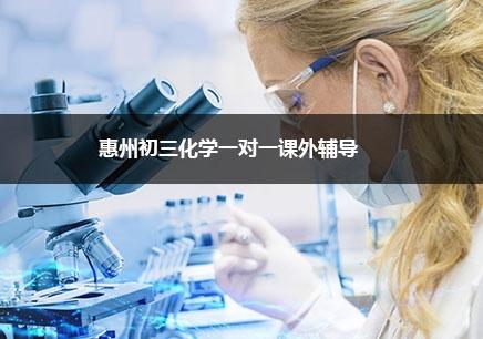 惠州初三化学一对一辅导