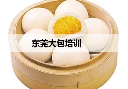 深圳东莞大包技术培训