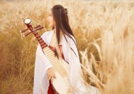 上海琵琶培训机构