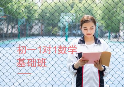 杭州初中一对一数学补习