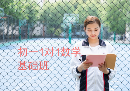 北京初中一对一数学补习