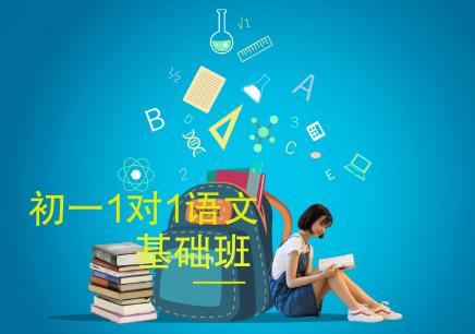 北京初1对1语文辅导班