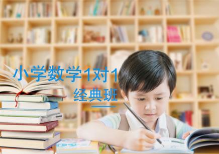 南京小学数学1对1补习班