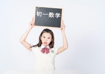 武汉初中数学补习辅导班