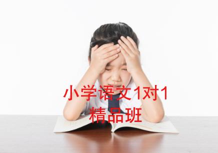 成都小学语文1对1补习班