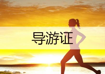 北京导游证网课培训