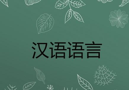 深圳汉语语言培训课程