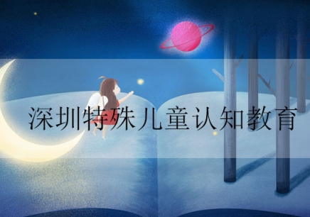 深圳特殊儿童认知教育