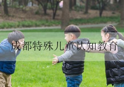 成都特殊儿童认知教育