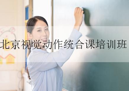 北京视觉动作统合课培训班