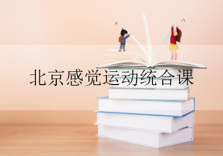 北京感觉运动统合课