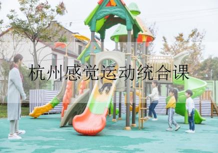杭州感觉运动统合课