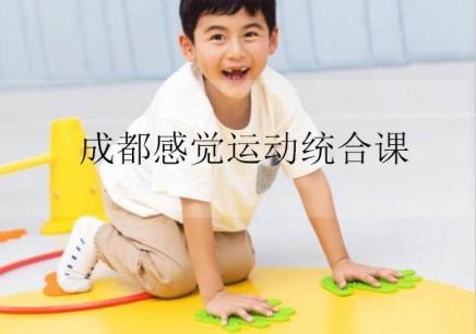 成都儿童感觉运动统合课