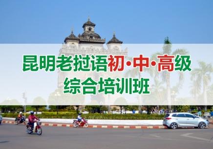昆明老挝语初中高级综合培训班