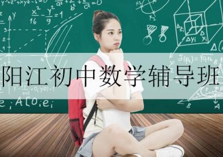 阳江初中数学辅导班
