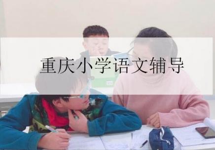 重慶小學語文輔導課程