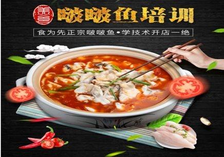 深圳食为先啵啵鱼培训