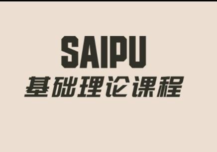 赛普基础理论课程简介